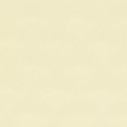 Alkorplan 2000 písková